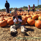 Uncle Shuck's Corn Maze & Pumpkin Patch in Dawsonville, Georgia