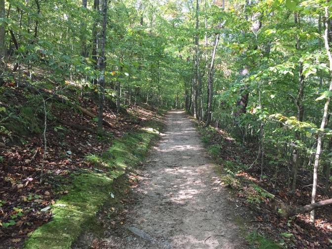 Walking the White Trail.